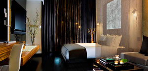The Standard High Line Hotel - New York  - Boutique Hotel New York City. Meatpacking District, NYC.