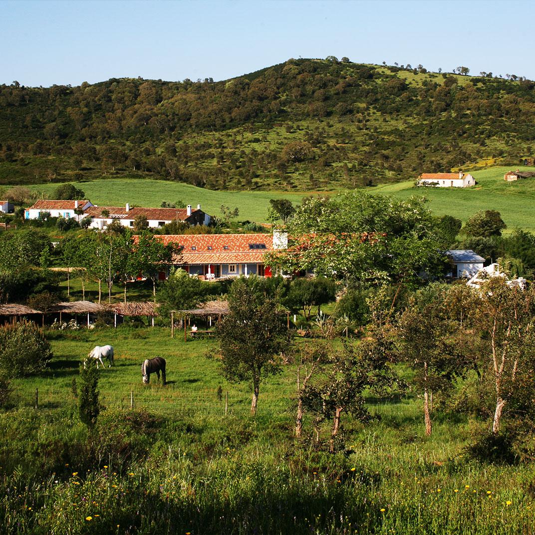 Herdade da Matinha Country House & Restaurant